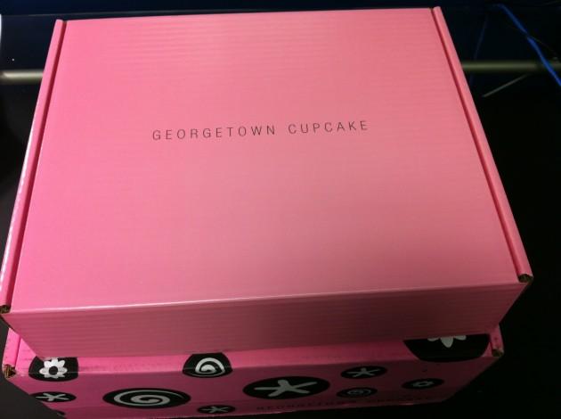 Georgetown Cupcake Box Inner