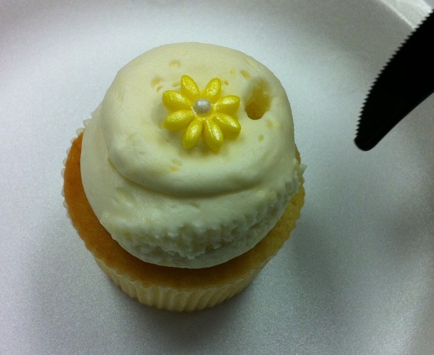 Daisy Cupcake Up Close