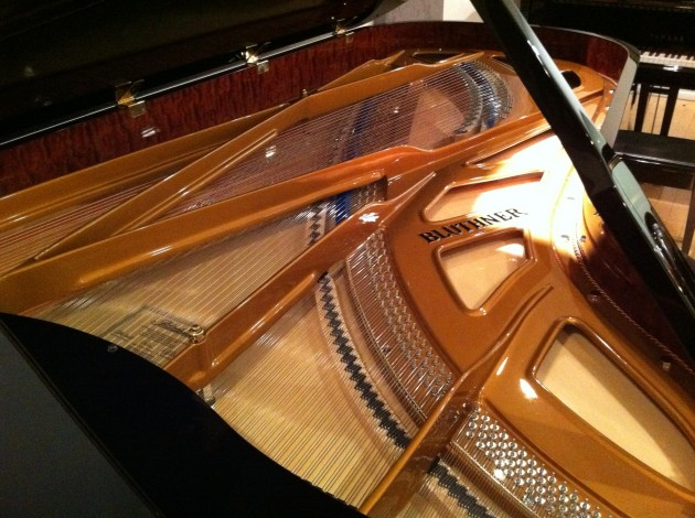 Inside the Soundboard of a Blunther Grand Piano