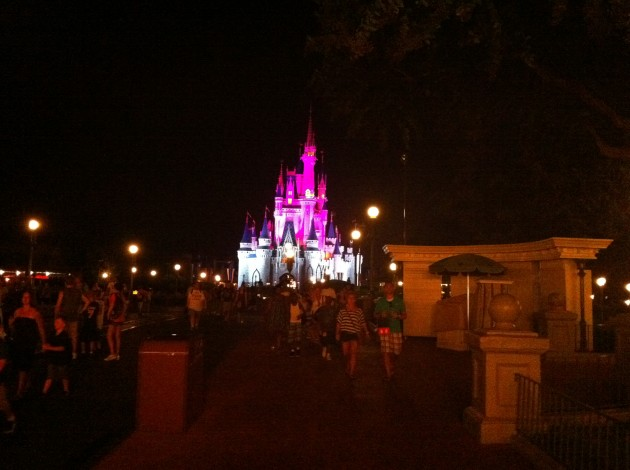 Cinderella Castle Magic Kingdom Night in Purple and White Light