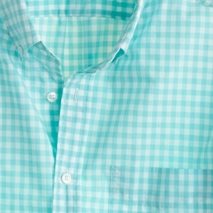 Thomas Mason Shirting Fabric