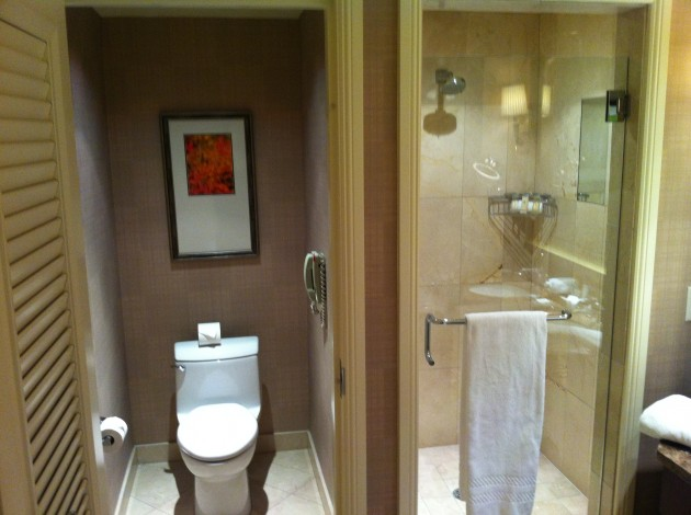 Ritz Carlton Denver Bathroom from Left
