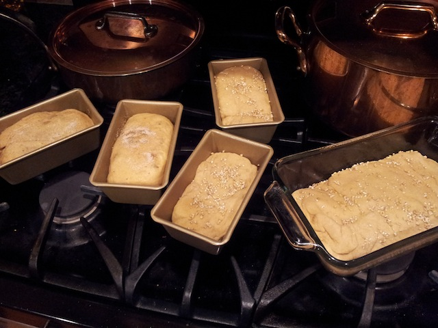 Letting Bread Loaves Rise Before Baking