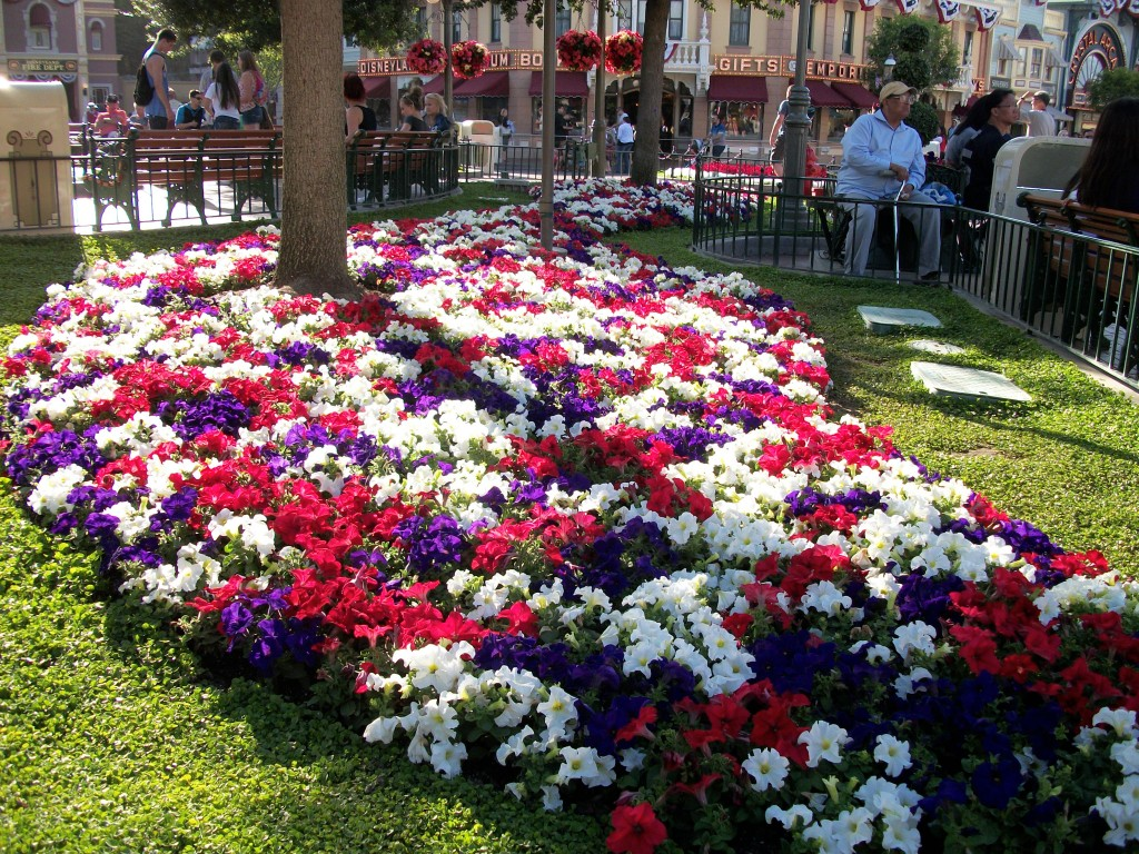 More Beautiful Flowers and Landscaping at Disneyland
