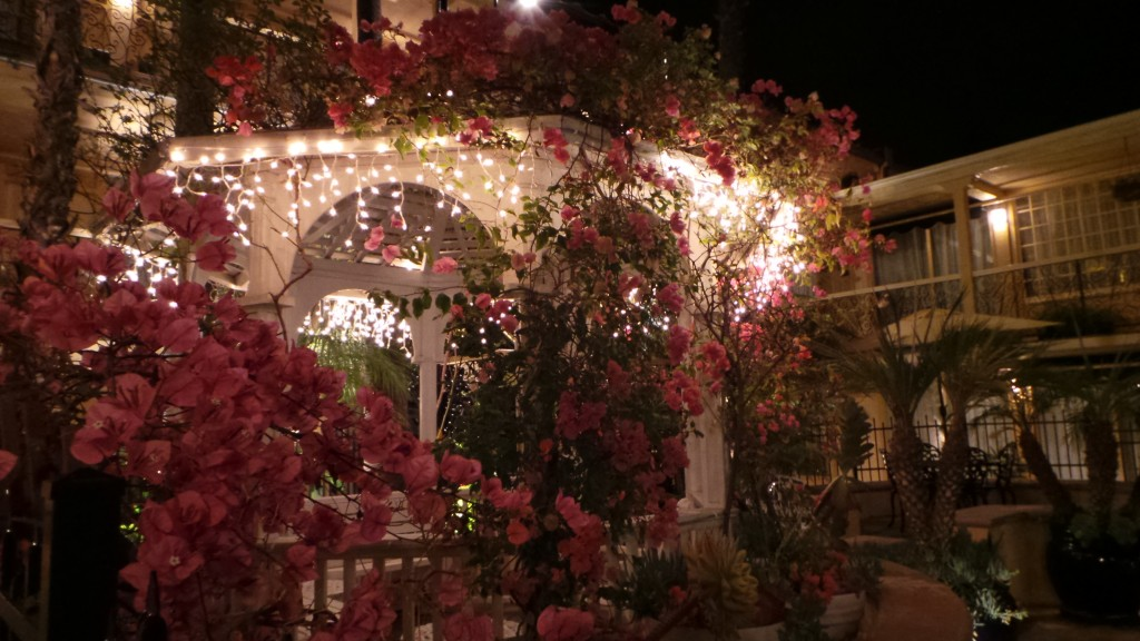 Holiday Inn Laguna Beach at Night Flowers