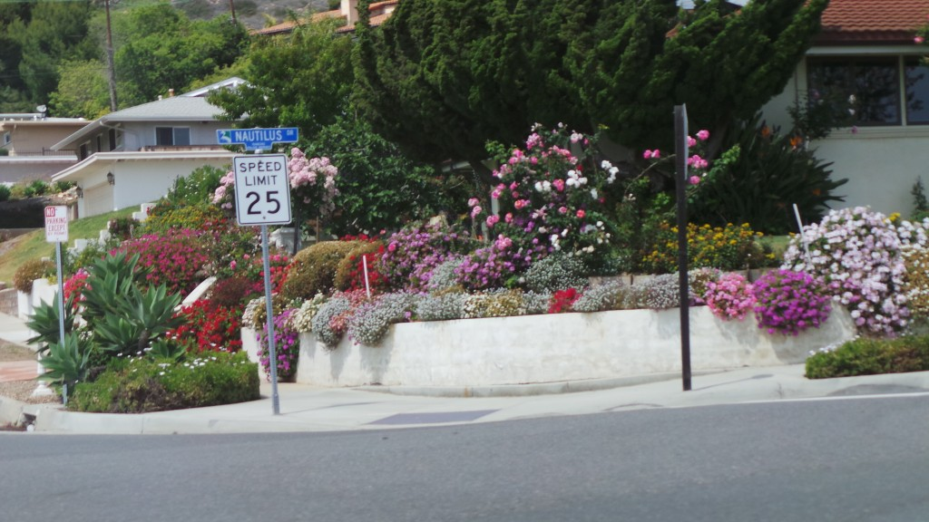 More Flowers Street Sign California