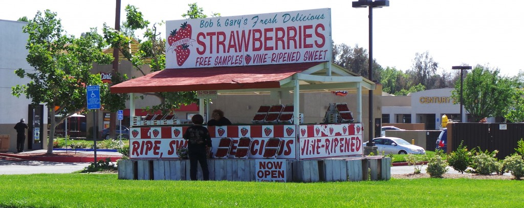 Temecula Strawberry Stand