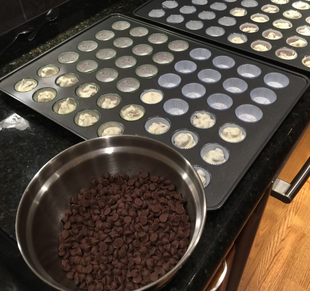 Milk Chocolate Chips Ready to Melt