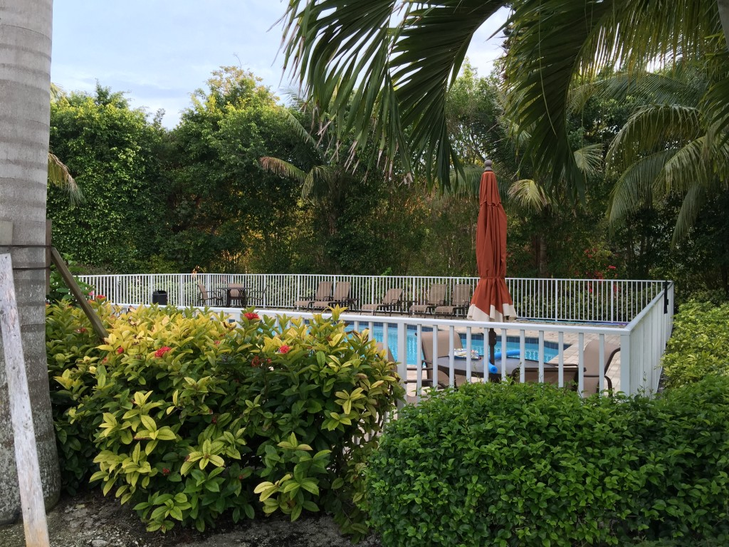 Heated Pool Otter Banks Captiva Florida