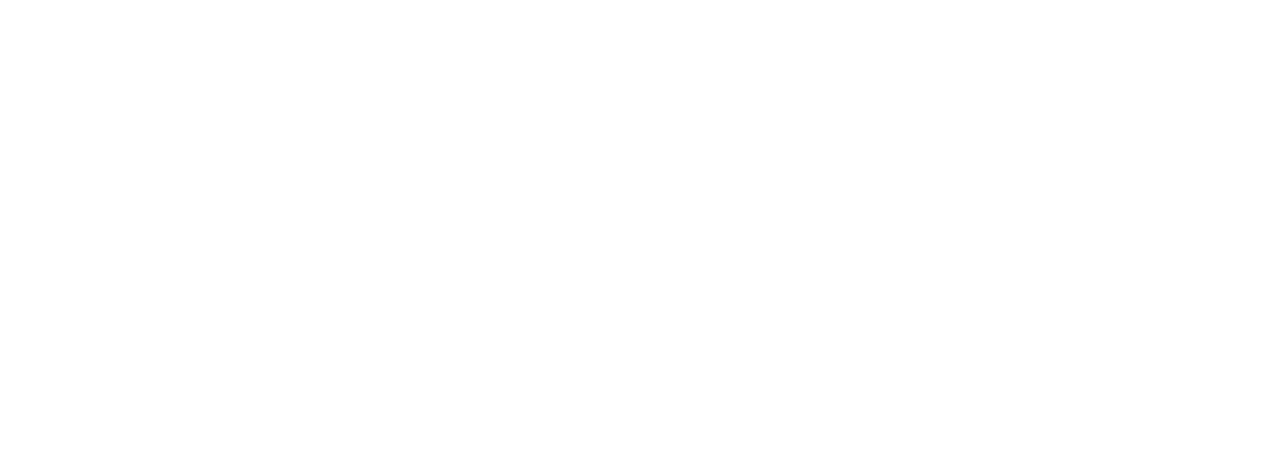Dr Martin Luther King Jr Signature