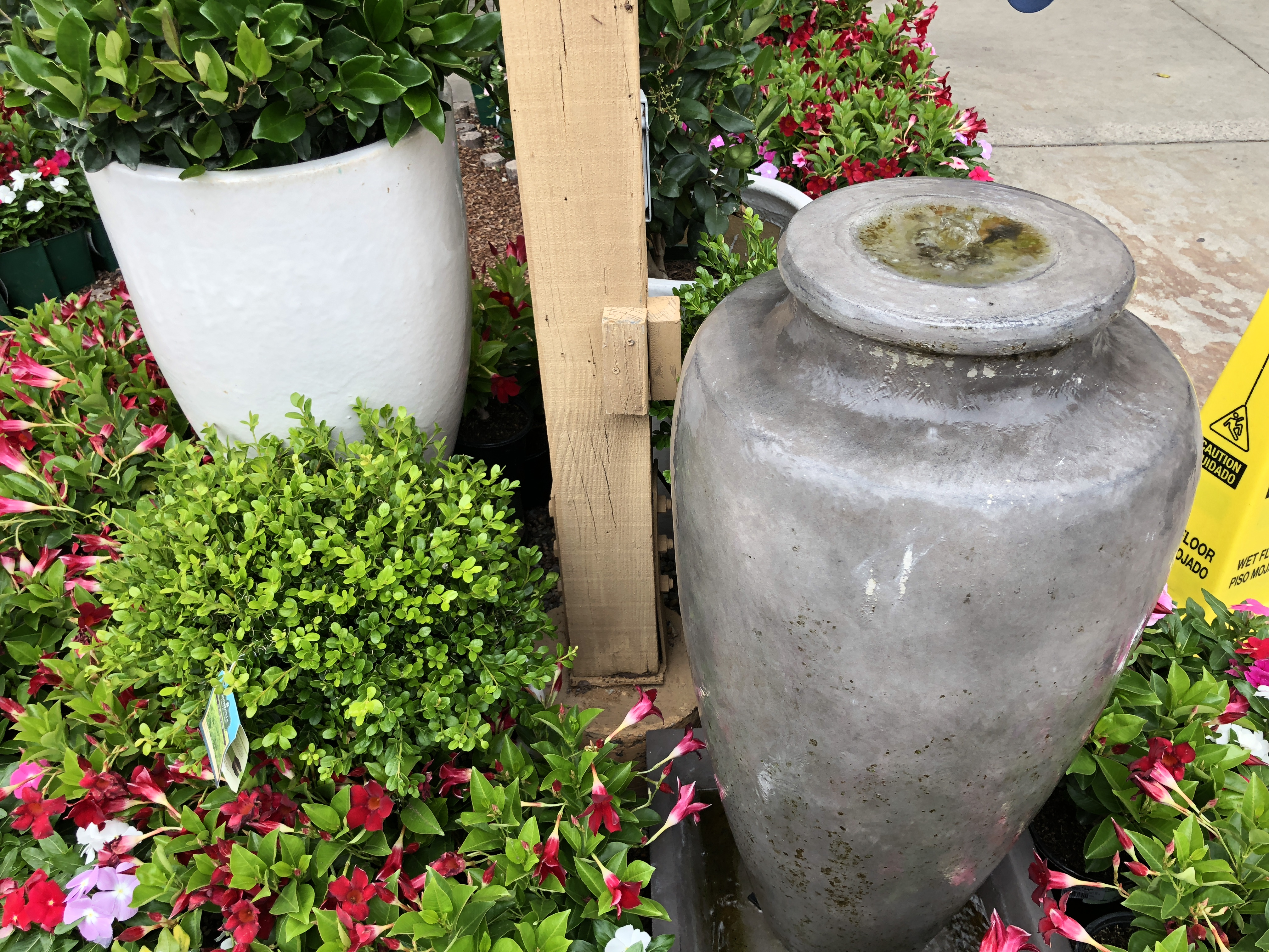 Armstrong's Garden Centers Newport Beach Water Fountain and Flower Arrangement