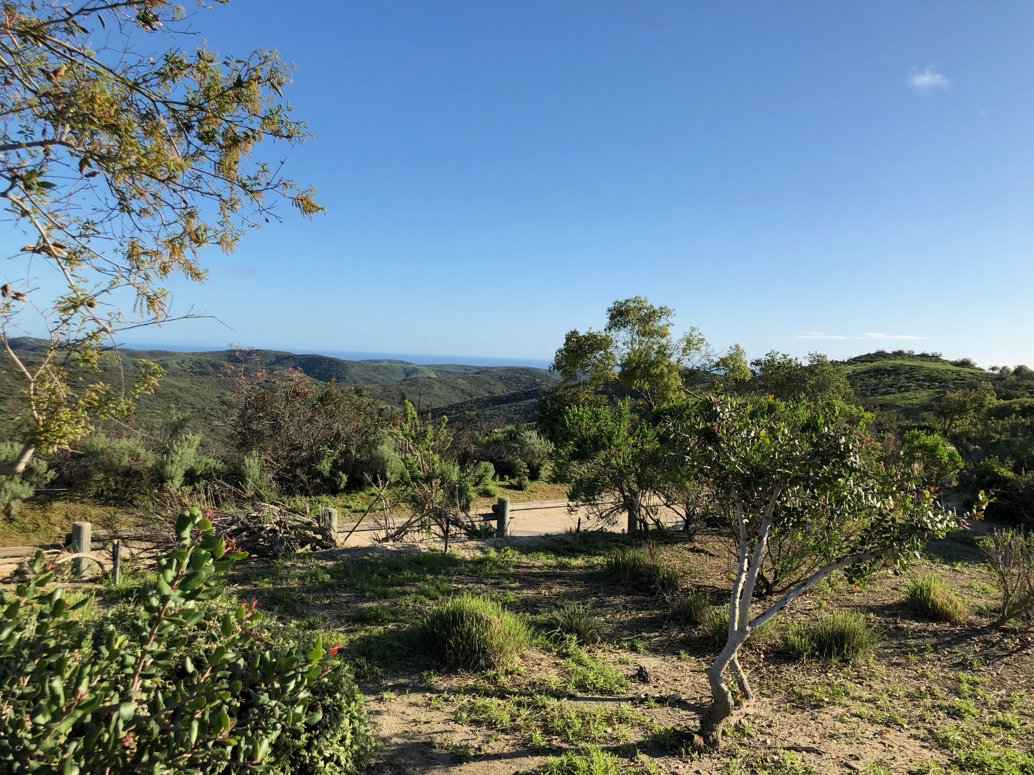 Walking the State Park Trails in Newport Beach