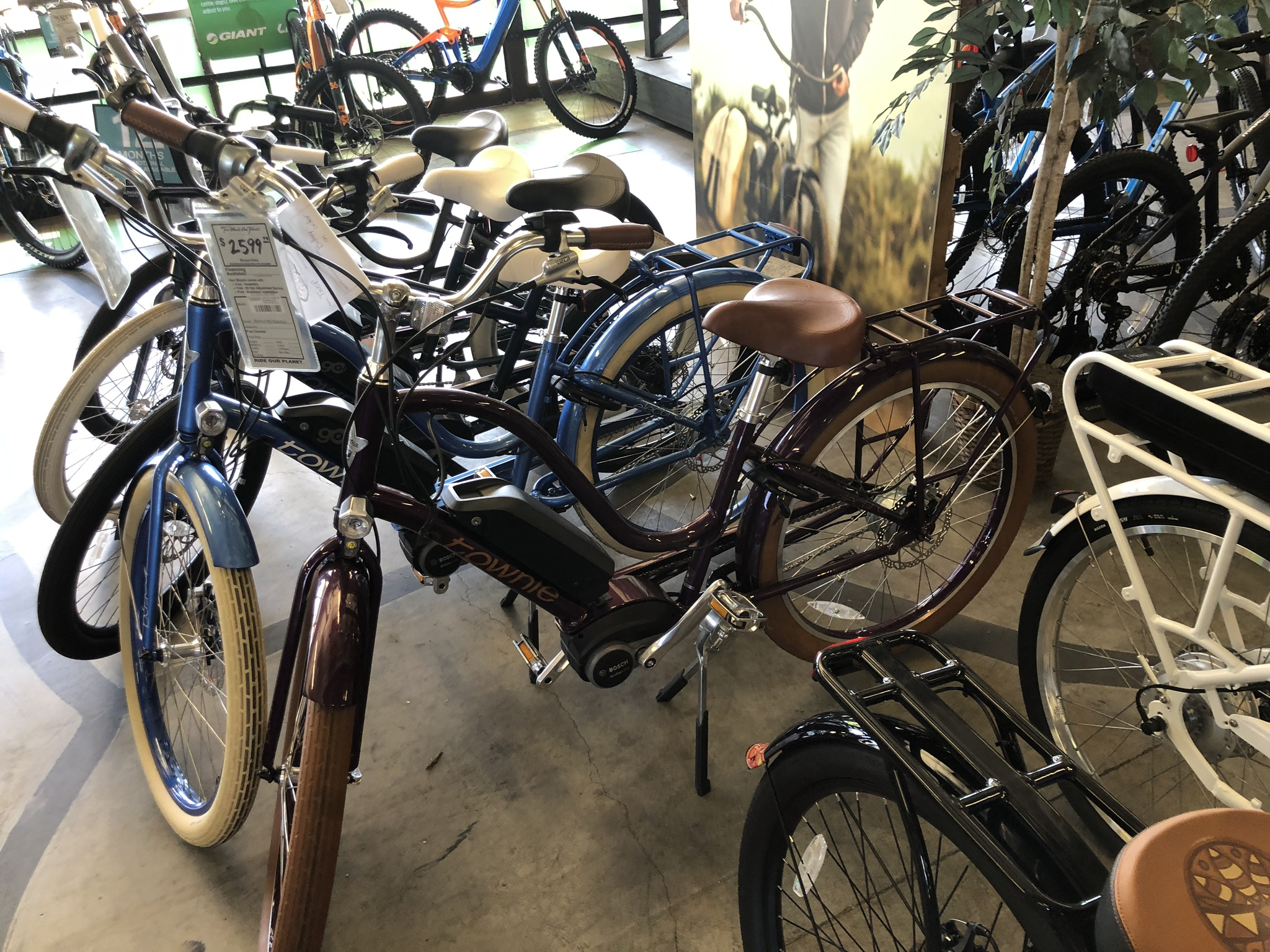 Bicycle Store in Costa Mesa California 2